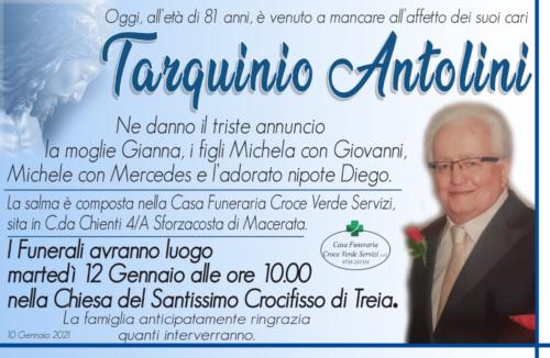 Tarquinio Antolini